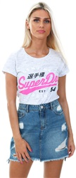Superdry Heel Flip Grey 54 Entry T-Shirt