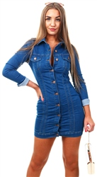 Parisian Blue Denim Button Front Long Sleeve Dress
