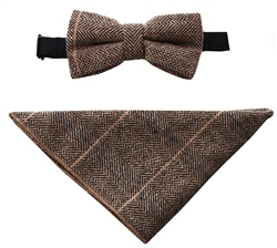 Cavani Albert Brown Bow Tie & Pocket Square