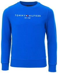 Tommy Jeans Lapis Lazuli Essential Logo Pure Cotton Sweatshirt