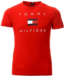 Tommy Jeans Deep Crimson Pure Organic Logo T-Shirt