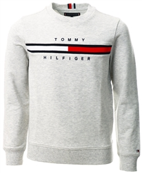 Tommy Jeans Light Grey Heather Th Cool Logo Sweatshirt