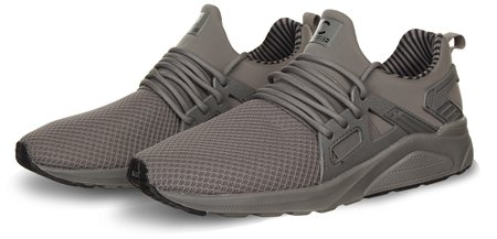 Certified Grey Trainer  - Click to view a larger image