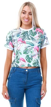 Hype Flamingo Flamingo Paradise Crop T-Shirt  - Click to view a larger image