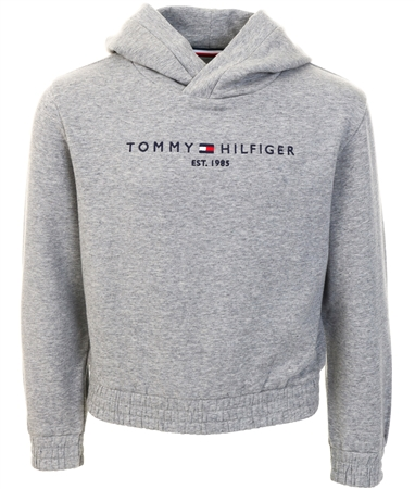 Tommy Jeans Mid Grey Htr Essential Logo Embroidery Fleece Hoody  - Click to view a larger image